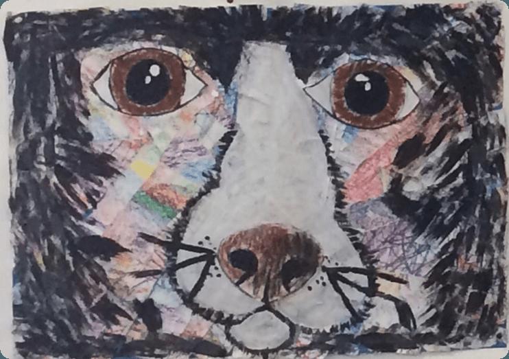 Tiergesichter 4